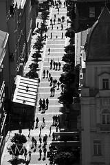 Shadows, People cast (2) (Nataraj Metz) Tags: shadow people silhouette hungary budapest menschen unesco schatten ungarn hun pest magyarorszg hungra ststephensbasilica hongrie pedestrianzone carfreezone szentistvnbazilika magyarkztrsasg callepeatonal baslicadesanesteban hungario ststephansbasilika zonepitonne fusgngerzone mittelungarn budapeto tamron18270mmf3563diiivcpzd fusgngerbereich basiliquesainttiennedepest kzpmagyarorszg bazilikodestefanola1a