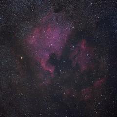 NGC7000-LRGB (Astro Photographer) Tags: nebula astronomy ngc7000 ic5070 astrometrydotnet:status=solved astrometrydotnet:version=14400