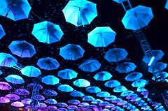 ... (Bartek Baracz) Tags: pink light white color night umbrella nikon parasol karnawa coulor parasole 2015 starwka carnivall nikkor18105 d5100 straremiasto sztukmistrzw streetsoflublin