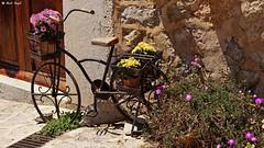 Bicycle and flowers (dreptacz) Tags: rower kwiaty mur majorka hiszpania slt55 lustrzanka sony kierownica worldtrekker tarocksfoto
