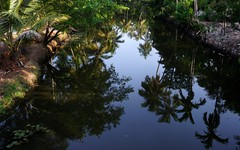 Skyline Reflected on  Kerala  Waterways.._ (-RejiK) Tags: bridge blue trees green water beautiful beauty reflections palms landscape nikon driving view dream kerala reality waters may13 backwaters waterway vaikom coconuttrees lovley d90 coconutpalms godsowncountry kuttanad rejik vaikomtrip thanneermukkaom waterrejik
