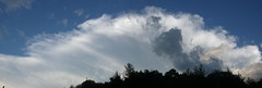 Incus (TudorGothicSerpent) Tags: sky cloud storm weather skyscape evening thunder anvil cumulonimbus weatherscape incus