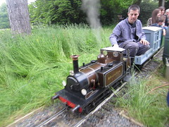 IMG_1139 (demu1037) Tags: miniature railway 1025 firefly kerrs birchley