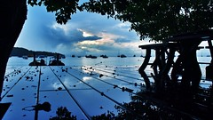 The Photographs of Scott Lumley (scott.lumley) Tags: thailand olympus thai m43 micro43