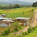 Vita di campo nei pressi di Chimaltenango