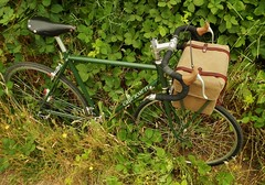 Found the Blackberries! (guidedbybicycle) Tags: road bicycle oregon cycling ride handmade steel hill eugene briggs