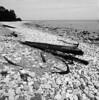 Remains (schoeband) Tags: bw 120 6x6 film mediumformat sweden schweden shipwreck sverige rodinal seashore öland hasselblad500cm naturreservat swiks efker25 vraket