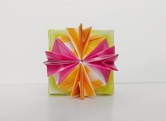 Omega Kusudama (Byriah Loper) (Byriah Loper) Tags: origami paperfolding modularorigami byriahloper