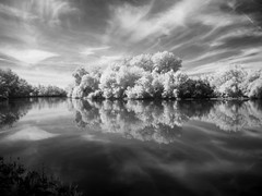 IRiver (DomiKetu) Tags: trees bw reflection nature water clouds reflections landscape ir landscapes olympus le romania mures lipova 720nm xz1