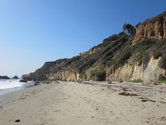 El Matador State Beach,  CA IMG_2927 (Hart Walter) Tags: spotted californiabeach penicillatus cormorantphalacrocorax elmatadorstatebeach lapiedrastatebeach sandpiperactitis maculariusbrandts