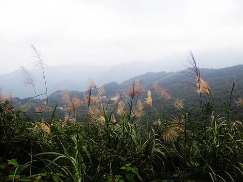 向天湖光天高山 (59).jpg