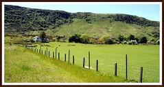 Farm (tor-falke) Tags: landscape scotland europa europe farm ngc scottish land paysage landschaft arran isleofarran schottland écosse