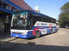 Yutong ZK6122H9 Transtur # 481 (Adrian (Guaguas de Cuba)) Tags: bus buses cuba omnibus yutong transtur zk6122h9