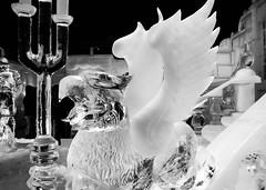 Frozen (Alberta Verrocchio) Tags: sculpture ice statue frozen blackwhite europe arte bambini bruxelles disney bn e bruges sculture walt bianco freddo nero biancoenero waltdisney belgio ghiaccio cartoni infanzia