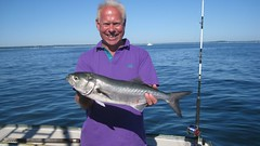 "Mike Hansell - 8lb Bluefish • <a style=""font-size:0.8em;"" href=""http://www.flickr.com/photos/113772263@N05/11834823683/"" target=""_blank"">View on Flickr</a>"