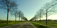 Netherlands Roadscapes 04