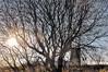 "DSC_014 - ""The Only Way is Up..."" (side down) (SWJuk) Tags: uk winter england home church reflections canal still nikon calm lancashire burnley 2014 leedsliverpoolcanal d90 nikond90 swjuk mygearandme jan2014"