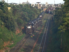 15898 DDM45 #878 + 837 indo para a Linha 2; na Linha 1 as DDM45 #858 + 834 + 817 + 815 (de traz) que continuaro com trem C757. Uberlndia MG (Johannes J. Smit) Tags: brasil vale trens efvm