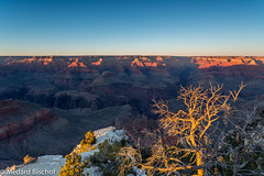 Grand Canyon II (@ Medi) Tags: usa nature grandcanyon amerika
