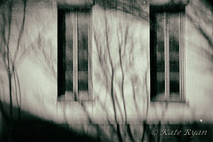 Deep Within (Kate Ryan Fine Art Photography) Tags: winter philadelphia icm 2014 intentionalcameramovement