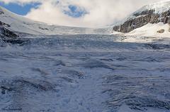 Glacier 3 (gproko11) Tags: bear lake snow canada calgary water jasper moose glacier banff elk ram moutians