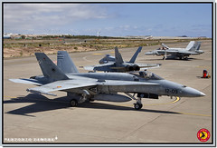 C.15-51 / 12-09  -  DACT 2013 (Antonio Zamora Aviation) Tags: españa spain fighter aircraft military jet c15 poker gato militar tenis 121 hornet fighters f18 combate spotting nato avion aircrafts aviones dact 122 caza spotters spotter cazas bizcocho ejercitodelaire ejércitodelaire gando spanishairforce macom cazabombardero ala12 gclp ala46 ef18 escuadron121 escuadron122 spainairforce nolebusquestrespies fuerzaaereaespañola ejercitoaire fuerzaaéreaespañola antoniozamora lamanchaspotters