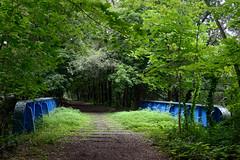 189/365 Right-of-way (Eddie C3) Tags: newyorkcity bronx parks nycparks vancortlandtpark oldputt