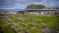 The Nut (schossow 9691) Tags: ocean green beach landscape rocks pentax australia stanley tasmania thenut godfreysbeach