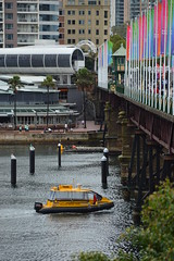 """River boat Taxi on Darling Harbour below the Pyrmont bridge (remnant of the """"Harborside"""" monorail station can be seen beside the bridge in the background) - Autumn in the rain 2017 (nicephotog) Tags: monorail station pyrmont ultimo bridge darling harbour harbor sydney nsw 2017 overcast cloudy weather bay water harbourside"""