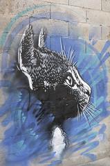 _DSC3431 (roubaix.fr) Tags: street art graff fresque culture urbain jonone mikostic