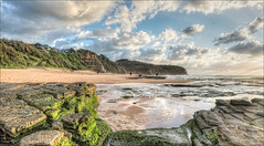Green with envy? (JustAddVignette) Tags: landscape algae australia beach clouds early headland landscapes newsouthwales northernbeaches ocean photographer rocks sand seascape seawater sky sun sunrise sydney turimetta water