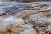 Porcelain palette (Chief Bwana) Tags: wy wyoming yellowstone yellowstonenationalpark nationalparks geyser hotsprings minerals psa104 chiefbwana geyserbasin norrisgeyserbasin
