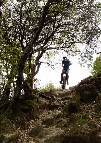 Upper Tilley Trail