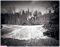 Ice pond at the farm (DelioTO) Tags: 4x5 aph09 architecture autaut blackwhite botanical canada duotone f227 february fomapan100 landscape ontario pinhole rain rural trails winter woods