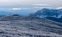 a view from mount jackson, nh (jtr27) Tags: dsc03645fr01 jtr27 sony alpha nex6 nex emount mirrorless sigma 1770mm f2845 dc macro laea2 adapter mount jackson newhampshire nh newengland hike hiking winter presidential range landscape whitemountains crawfordnotch