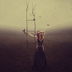Transcension (StephaniePearl ☪) Tags: conceptual fantasy atmosphere nature fineart outdoors photomanipulation majick magic dream surreal surrealism otherworldly fairytale faerie