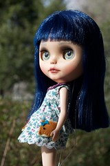 Asian Butterfly Love (Chassy Cat) Tags: asianbutterfly encore asian butterfly abe blythe chassycat customized custom doll blue hair scalp puppelina