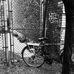Celui-là est prêt pour la saison... (woltarise) Tags: bicyclette neige glace entrée arbre montréal pluie