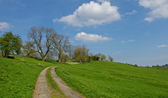 On the way to the village of Thorpe (Blue sky and countryside) Tags: walking exercise hills derbyshire peak district national park england blue sky drystonewalls green spring hot sunshine bluesky happy pentax