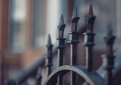 Gate (Jovan Jimenez) Tags: gate fence sony ilce 6500 a6500 alpha 50mm f12 metal point pointed bokeh nikkor nikon cinematic cinematography atmospheric vintage manual focus optical mirrorless dof lens manuallens vintagelens oldlens retrolens adaptedlens adaptedlenses ais classiclens classiclenses