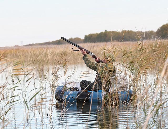Брянцам запретили охотиться наводоплавающую дичь