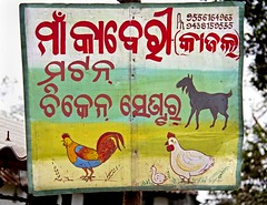 The burchers!!! (bag_lady) Tags: india art chickens animals sign painting goat handpainted tribalareas odisha burtchers sworissa