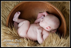 Kyleigh (sarahkathleendavis) Tags: baby girl fur wooden spring infant sleep may bowl camel newborn asleep 2013