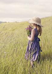 Flowergirl (SteinaMatt) Tags: summer portrait flower girl grass hat sunshine matt iceland dress bunch bouquet flowergirl steinunn búðardalur steina matthíasdóttir