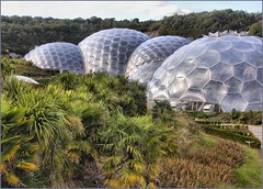 The Eden Project, Cornwall (robin denton) Tags: cornwall biosphere theedenproject
