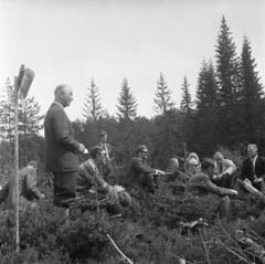 På tur i skogen - Det norske Skogselskap (1970)
