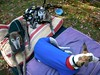 GreyhoundPlanetDay2010012
