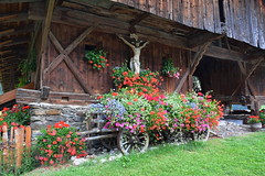 Flowered mountain house - Casa fiorita di montagna (SissiPrinces