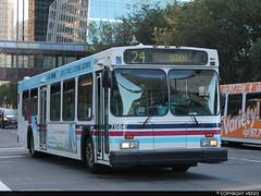 Calgary Transit #7684 (vb5215's Transportation Gallery) Tags: new calgary flyer 1999 transit d40lf