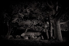 Megalithic tomb (uhx72) Tags: light bw lightpainting tree history megalithic stone sepia germany landscape tomb historic age mystic neolithic dolmen altmark diesdorf